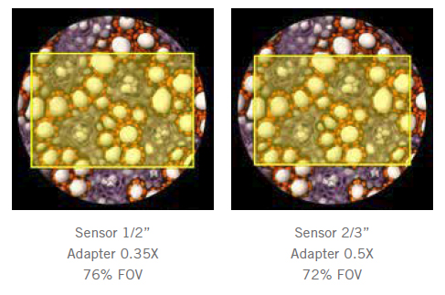 Microscope c-mount adapter comparisons