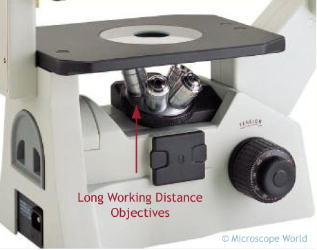 tissue culture microscope objectives