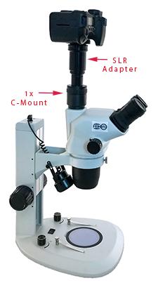 Microscope SLR Adapter for Digital Camera