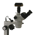 Digital Stereo Microscope