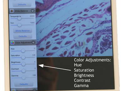 WiFi microscope camera color adjustment on software