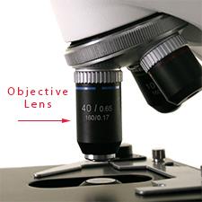 Microscope objective lenses.