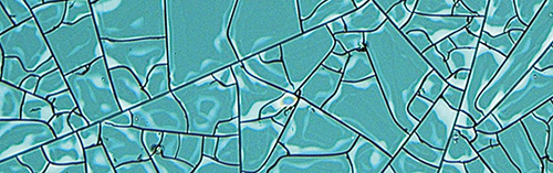 Polymers captured under a polarizing microscope.