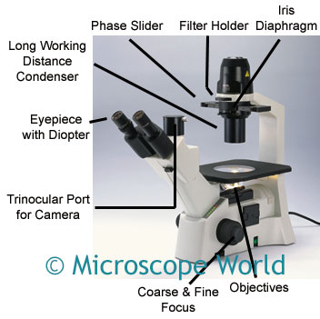parts of a microscope  and definitions