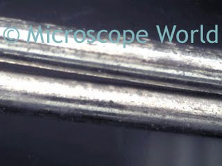 Compound Microscopes - Bates College