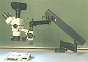 Trinocular stereo zoom microscope on articulating arm