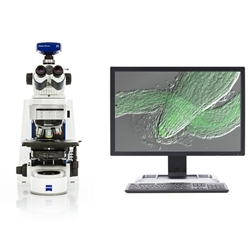 Upright Research Microscopes