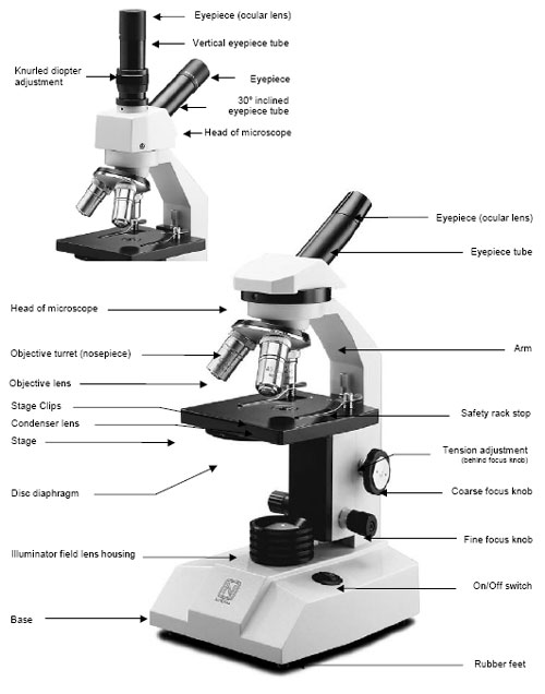 Microscope diagramnosepiece adjustment